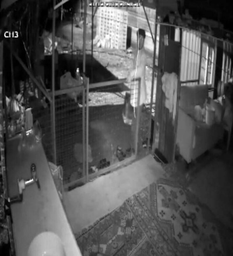 Bal hırsızı güvenlik kamerasına yakalandı