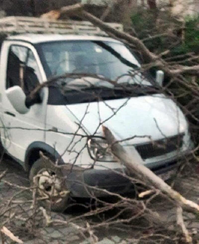 Sapanca'da kuvvetli rüzgar hasara yol açtı