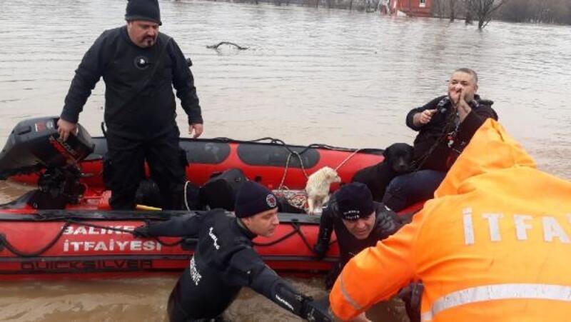Susurluk Çayıtaştı, mahsur kalan 7 köpekten 4'ü kurtarıldı