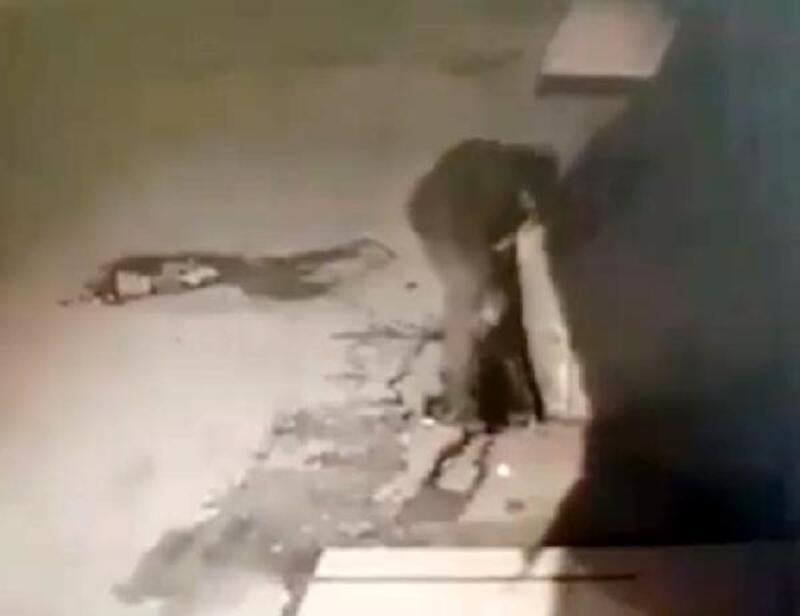 Hatay'da mazgal hırsızı güvenlik kamerasına yakalandı