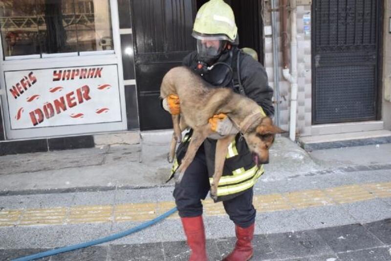 Yangında mahsur kalan 2 kişi ve köpek kurtarıldı