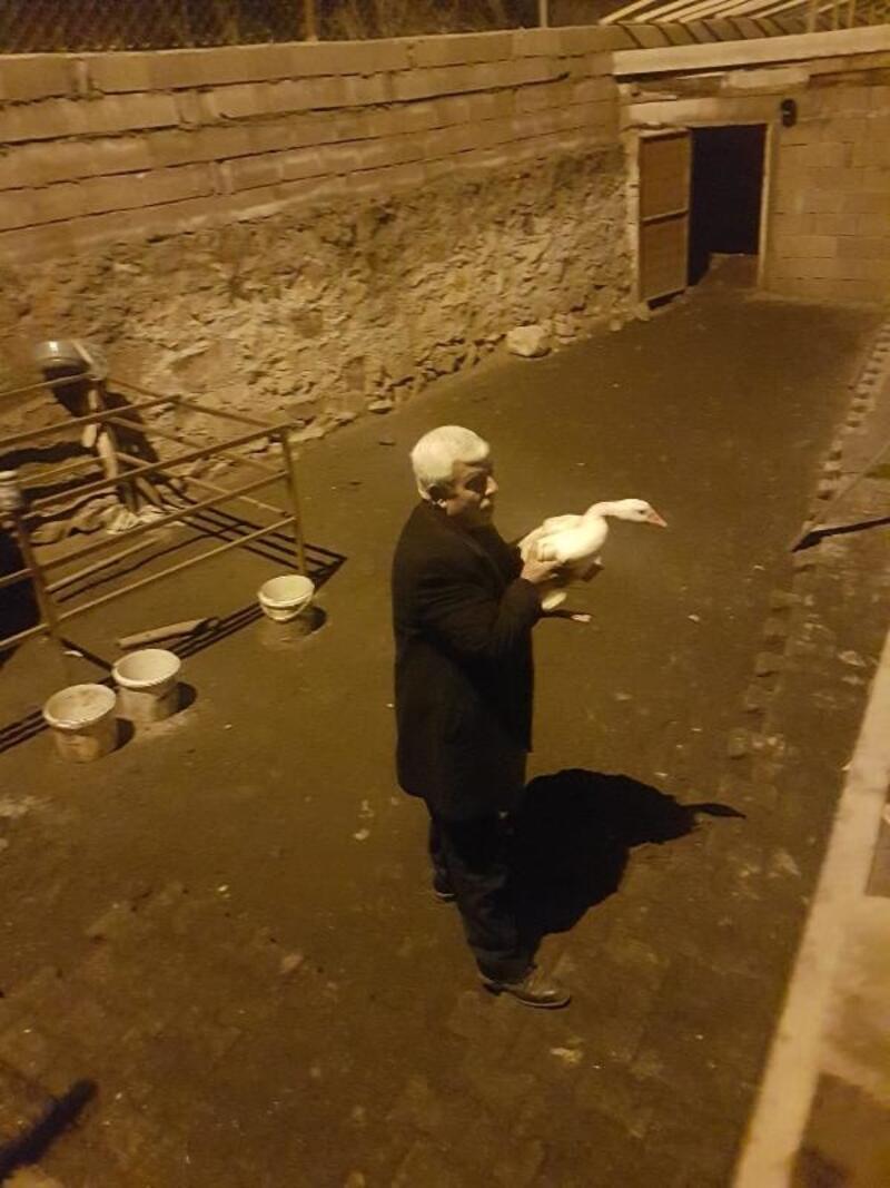Bağ-Kur emeklisinin su satarak aldığı kazlar çalındı