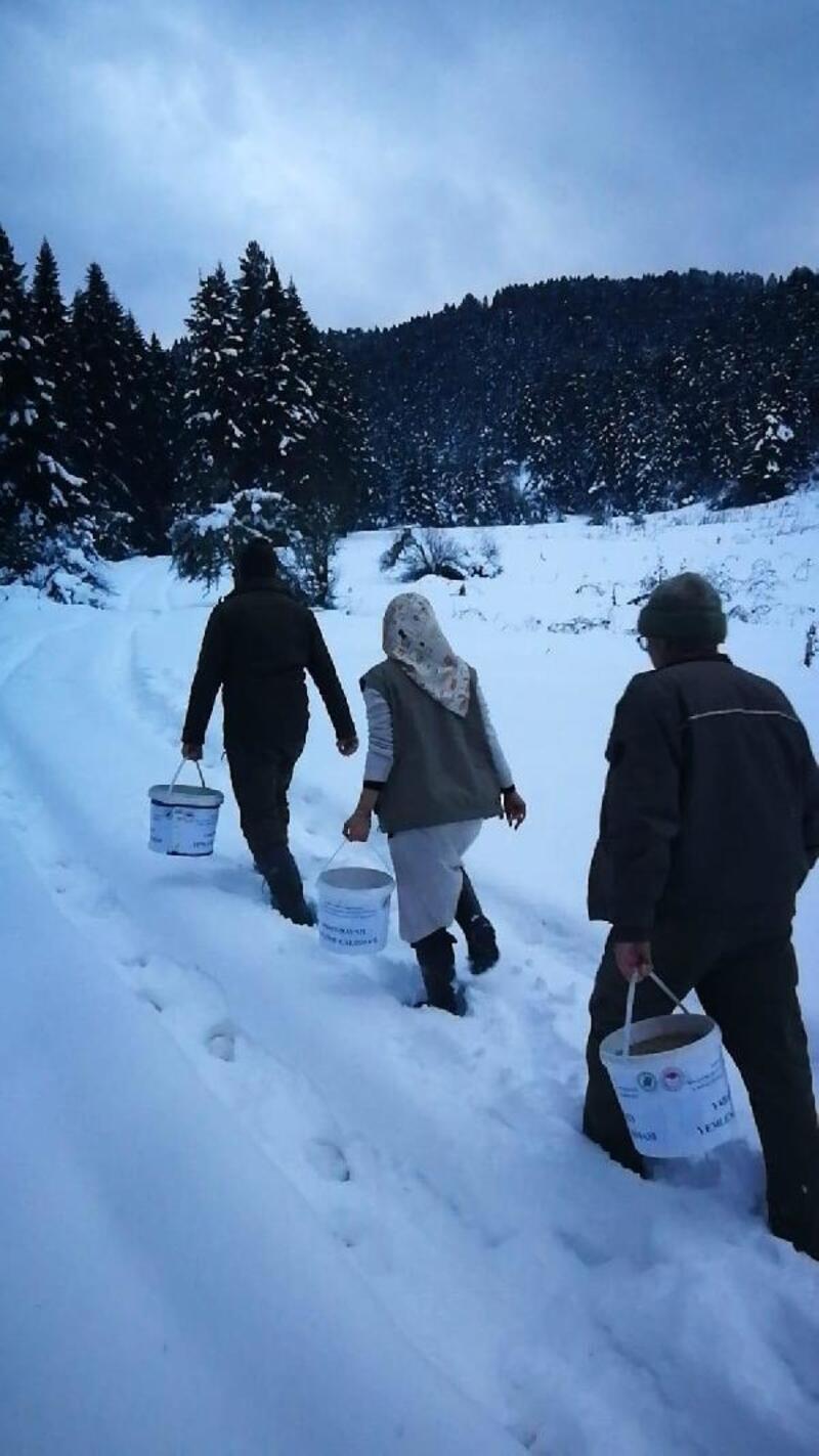 Karda aç kalan hayvanlar içim yem bırakıldı