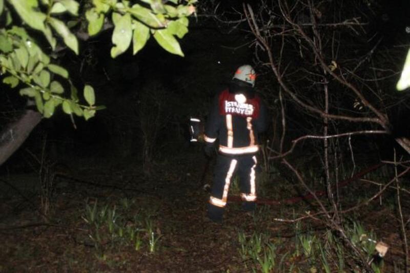 Silivri'de ağaçlık alanda baraka yangını
