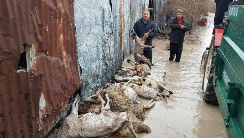 Osmaniye'de köyleri su bastı