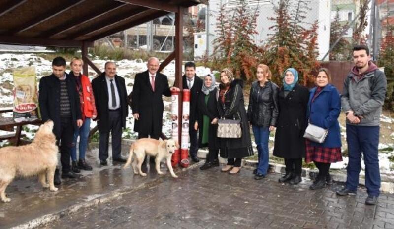 Karabük'te sokak hayvanları 'Dostluk Aparatı' ile aç kalmayacak