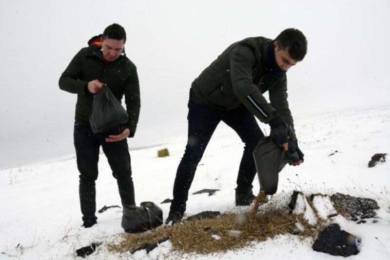 Siverek'te yaban hayvanları için doğaya yem bırakıldı