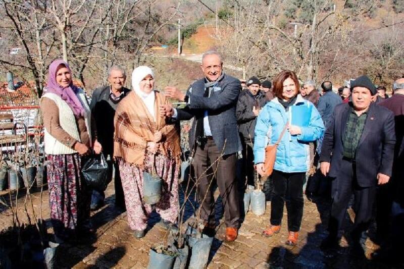 Ödemiş Belediyesi'nden 5 Köye 7 bin 556 fidan