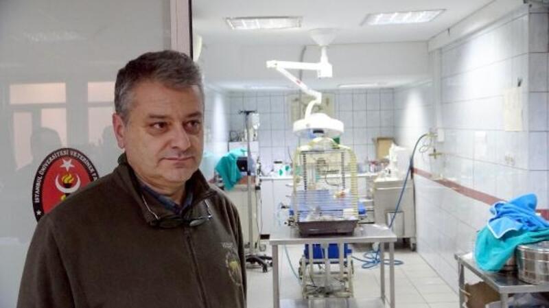 Murat Özdemir'in işkence ettiği papağan öldü