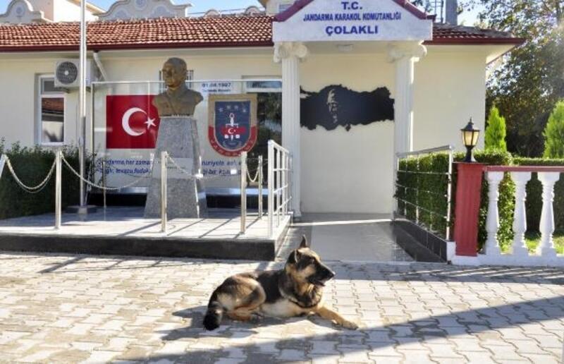 Jandarmanın sevgisi 'Zeyna'yı hayata bağladı