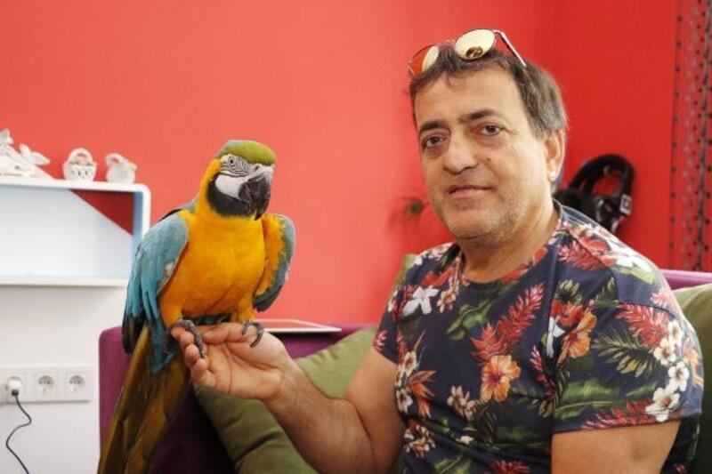 Sahibi, Özal'ın papağanı 'Cabbar'a eş arıyor