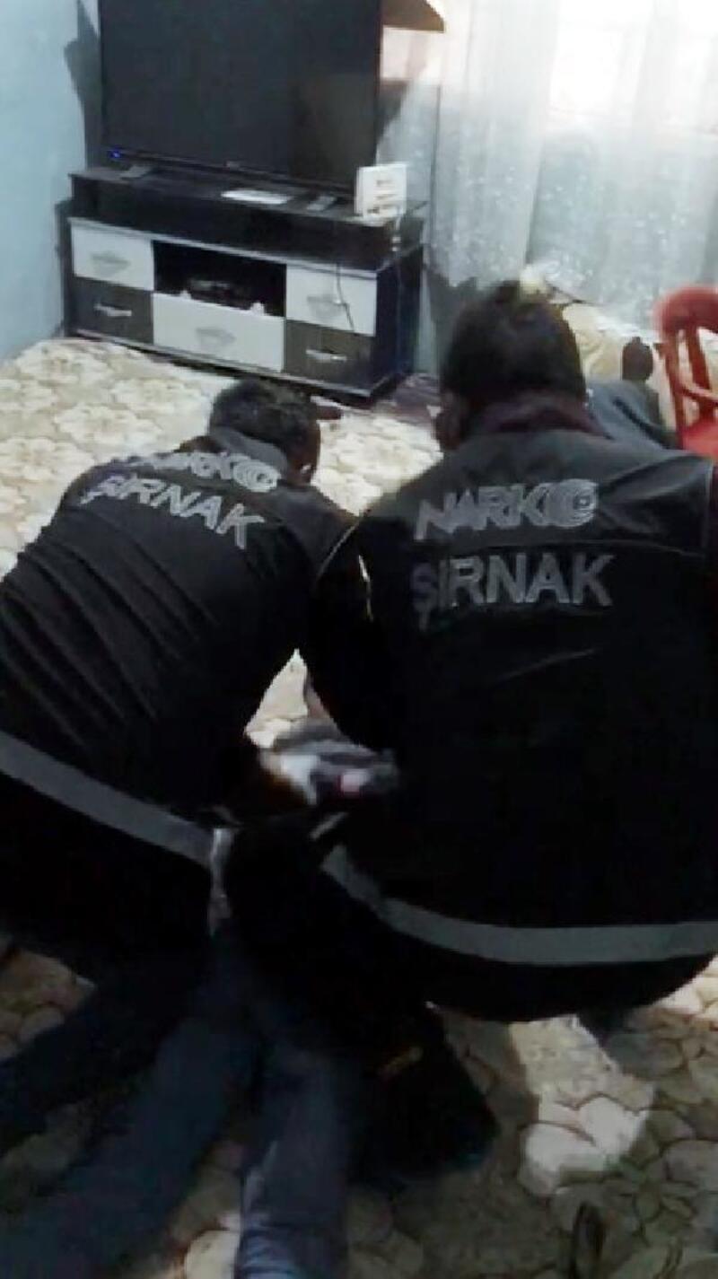 Cizre'de uyuşturucu operasyonu: 5 gözaltı