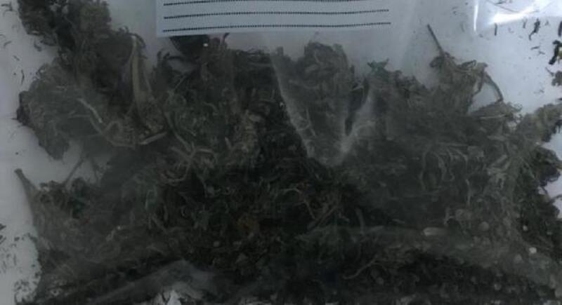 Amasya'da otomobildeki esrara 3 gözaltı