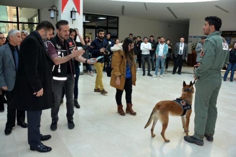 Üniversitelilere narkotik köpekleri ile uyuşturucu semineri