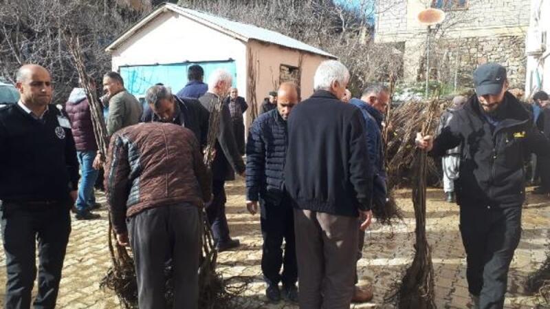 Çukurca'da çiftçilere 10 bin fidan dağıtıldı