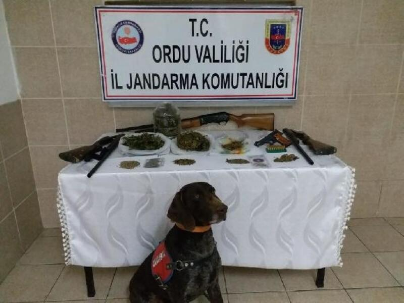 Ordu'da uyuşturucu ticaretine 3 tutuklama