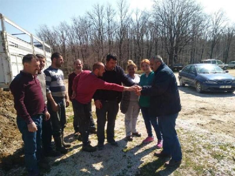 Demirköy'de genç çiftçilere 45 adet büyükbaş hayvan dağıtıldı