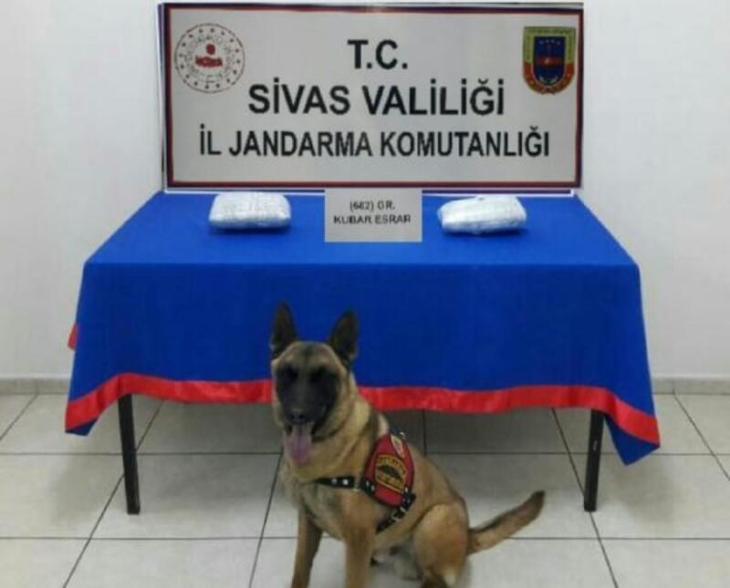Jandarmadan kaçakçılık ve uyuşturucu operasyonları