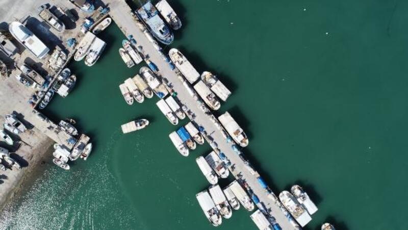 Akdeniz'i bekleyen tehlike