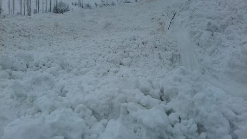 Yüksekova'da köye çığ düştü