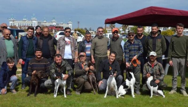 Av köpekleri yarıştı