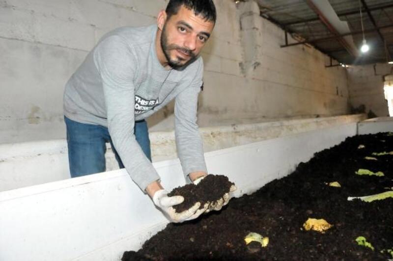 Solucan gübresi üretiminde talebe yetişemiyor