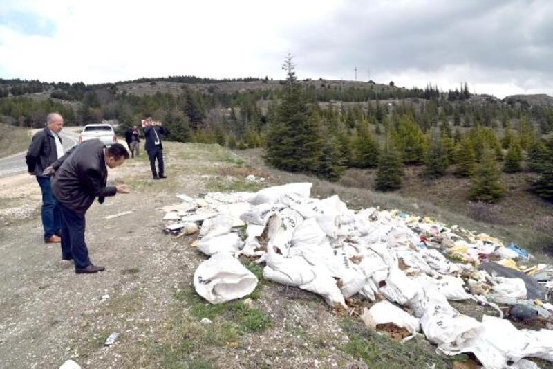 Ormanlık alanlara dökülen çöpler toplandı