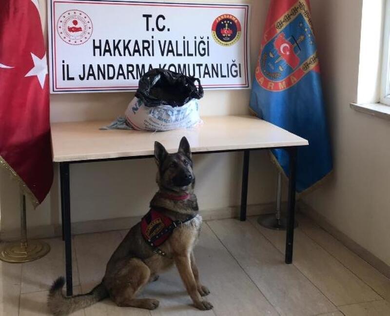 Yüksekova'da evde 17 kilo esrar ele geçirildi