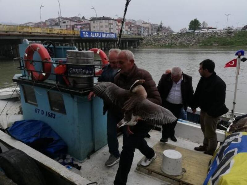 Köpeklerin saldırısında yaralanıp, denize düşen kazı balıkçılar kurtardı