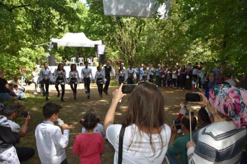 Marmaris'te yaşayan 3 bin Ordulu piknikte buluştu