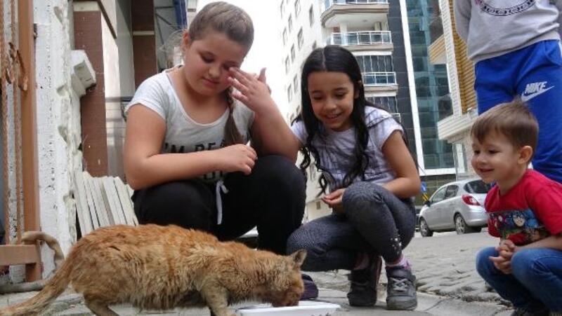 Eski kitapları satarak sokak hayvanlarına mama alıyorlar