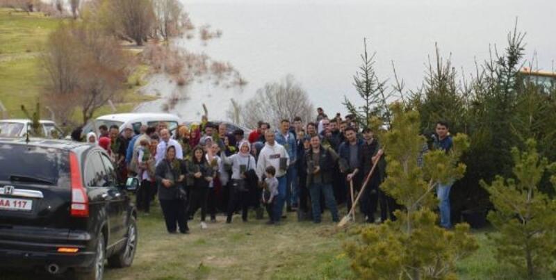 Gölova'da fidan dikme etkinliği düzenlendi
