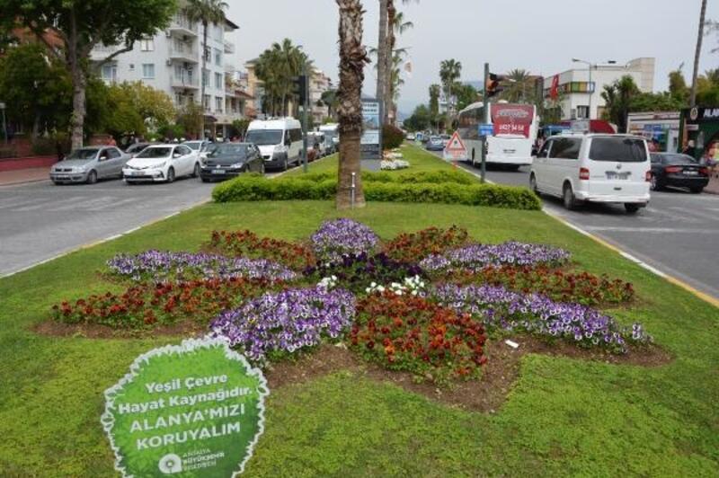 Alanya'ya 300 bin çiçek