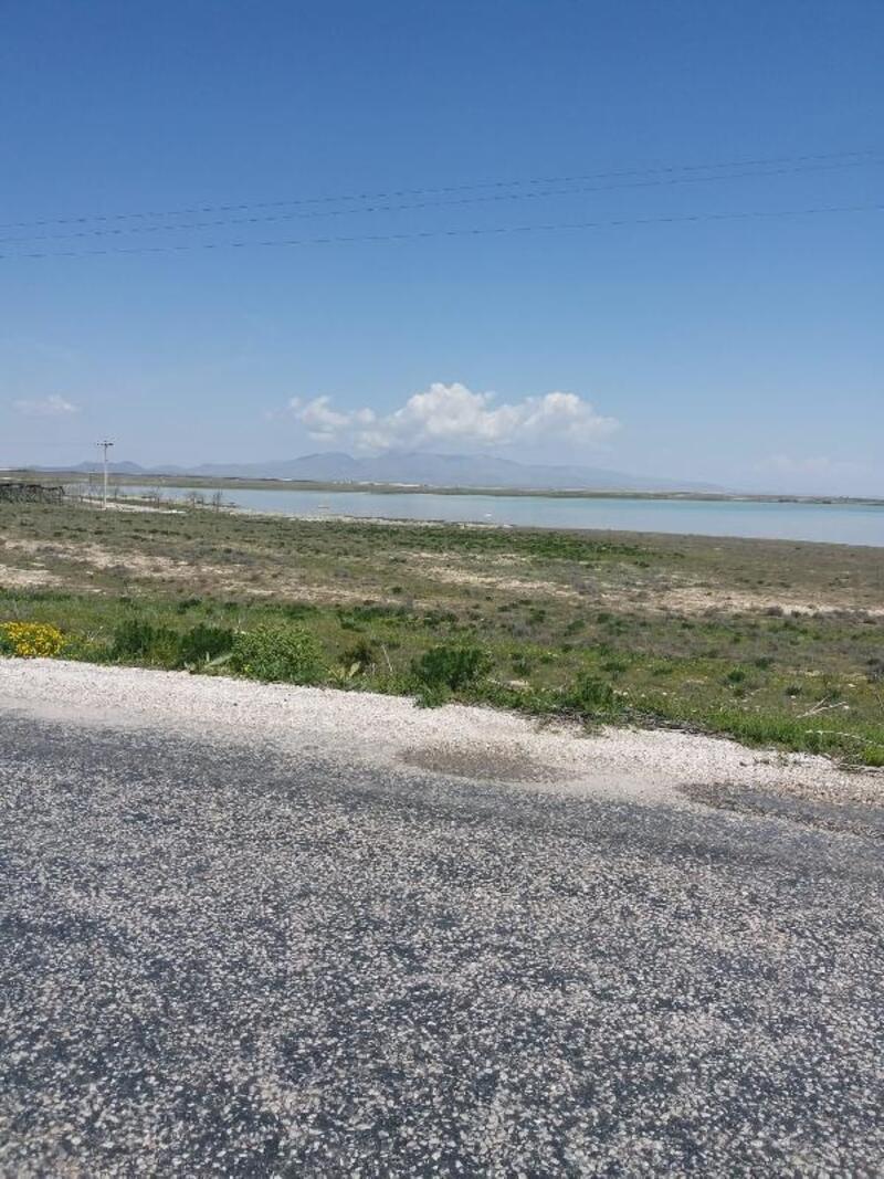 Kuş cenneti Akgöl'e, Ayrancı Barajı'ndan su takviyesi