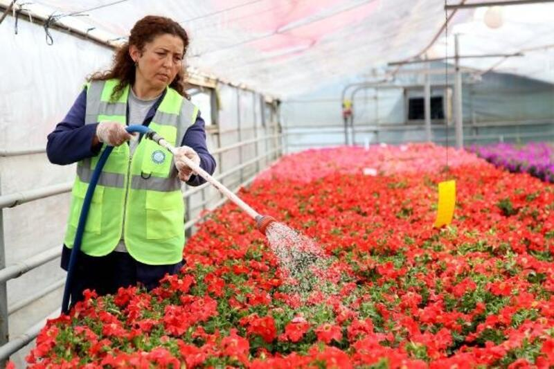 Eskişehir'e kadınların baktığı çiçekler renk katıyor