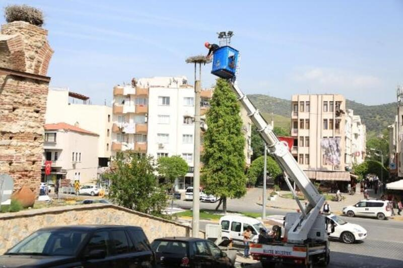 Belediyeden 'leylek' operasyonu