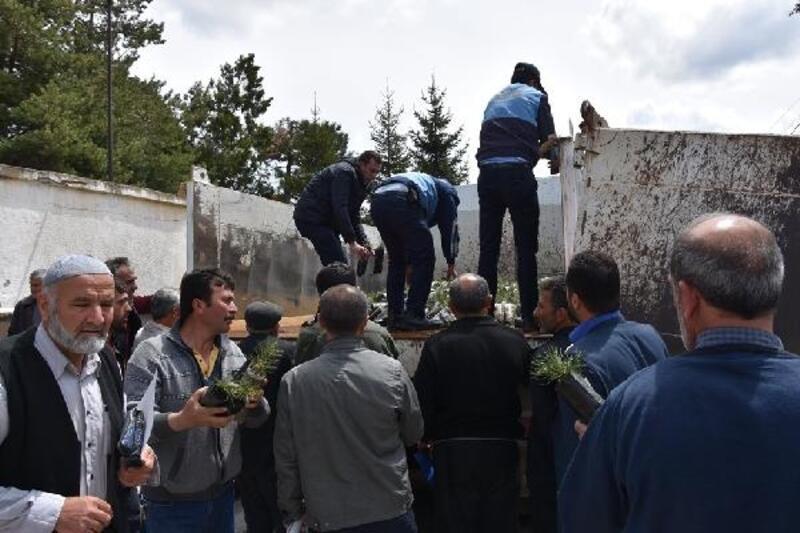 Tomarza Belediyesi, 2 bin fidan dağıttı
