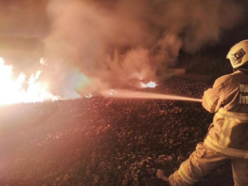 Burhaniye Orman İşletme Şefliği deposunda yangın