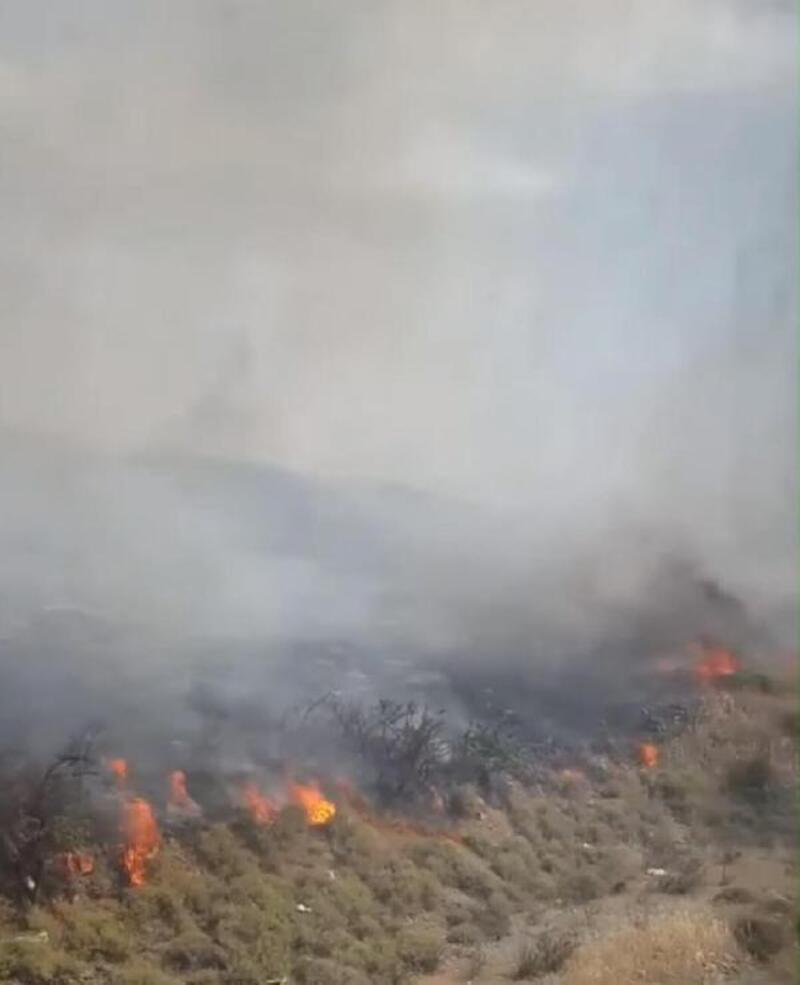 İzmir'de otluk alan yangını