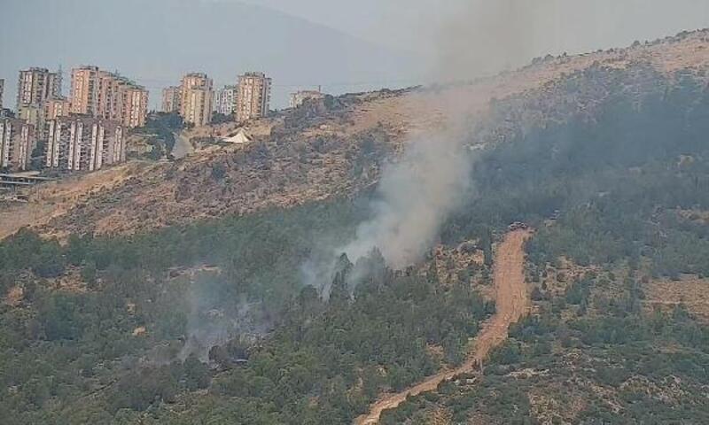 İzmir'de ormanda çıkan yangın söndürüldü, yakan aranıyor