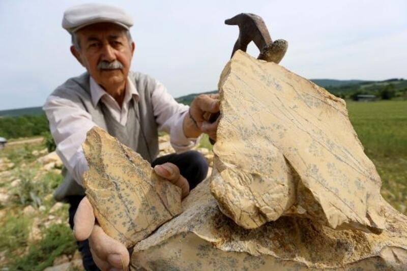64 yaşındaki 'Taş' koleksiyoncusu görenleri şaşırtıyor
