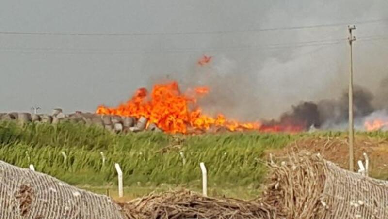 Aydın'da, fabrikanın pamuk deposunda yangın