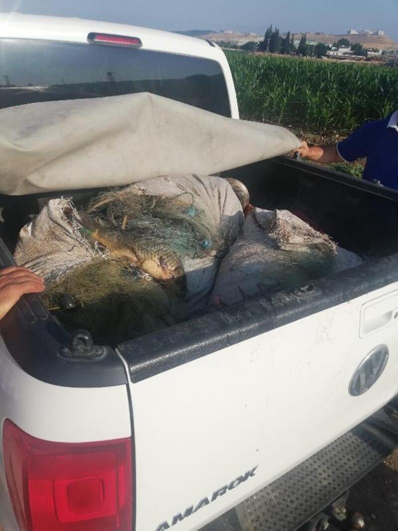Kaçak avlanan 2 kişi, 100 kilo balıkla yakalandı