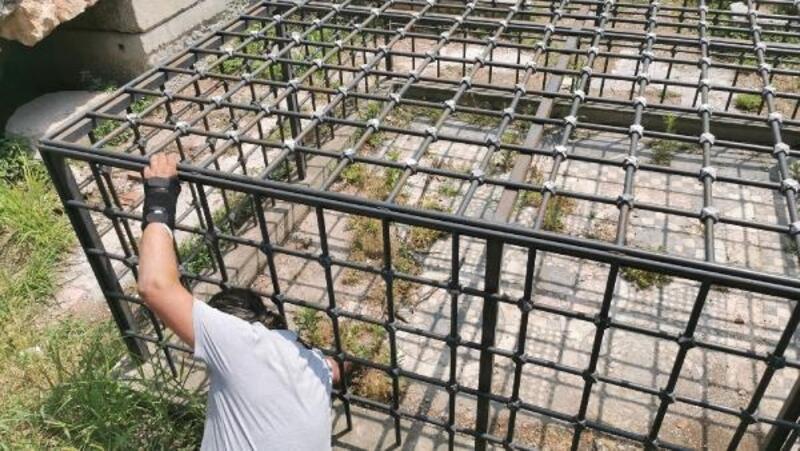 Kafese alınan tarihi mozaik yabani otlardan görünmüyor