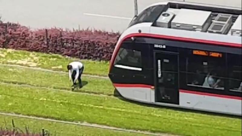 Tramvayı durdurup, rayların üzerindeki güvercini kurtardı