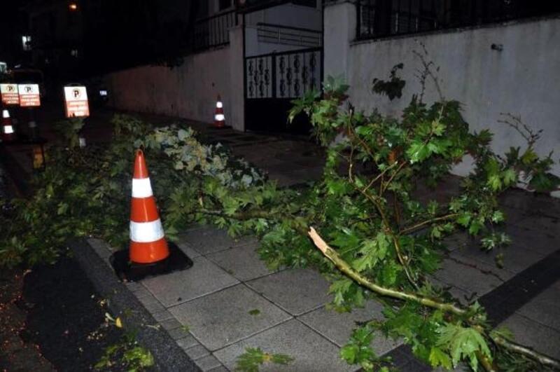 Malkara'da sağanak ile rüzgar hayatı olumsuz etkiledi