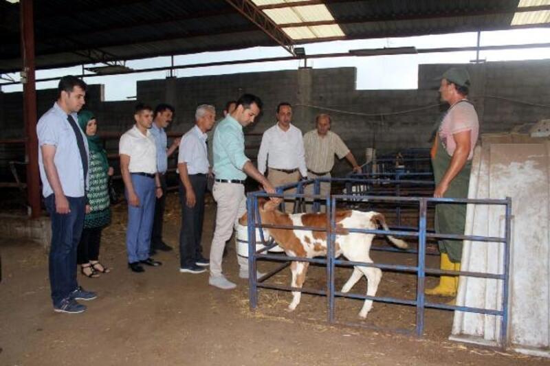 Hayvancılık ve Süt İşletmelerine ziyaret
