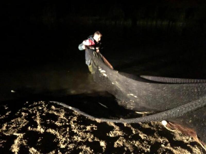 Van'da 11 ton inci kefali ele geçirildi