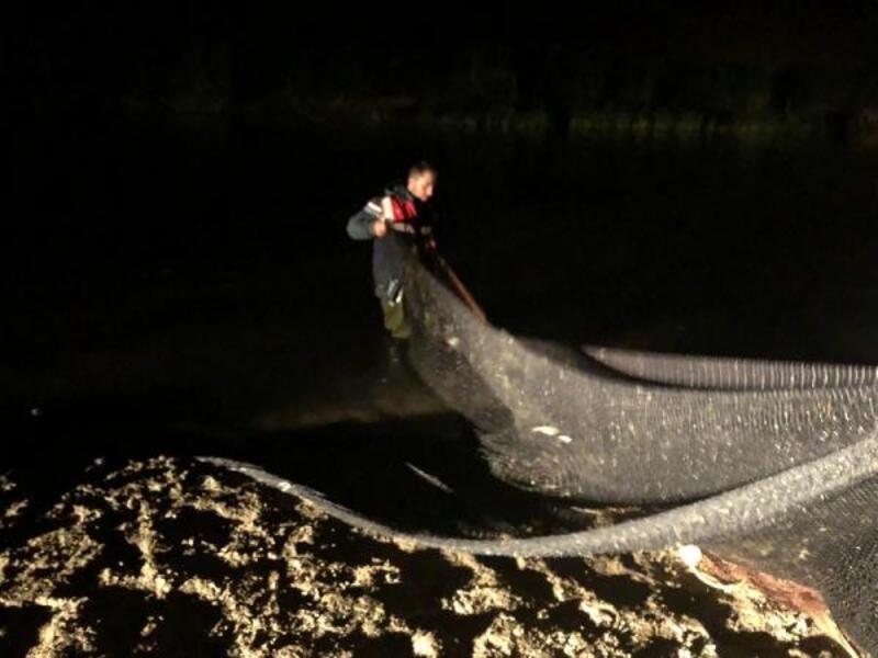 Van'da kaçak avlanan 1,6 ton inci kefali ele geçirildi