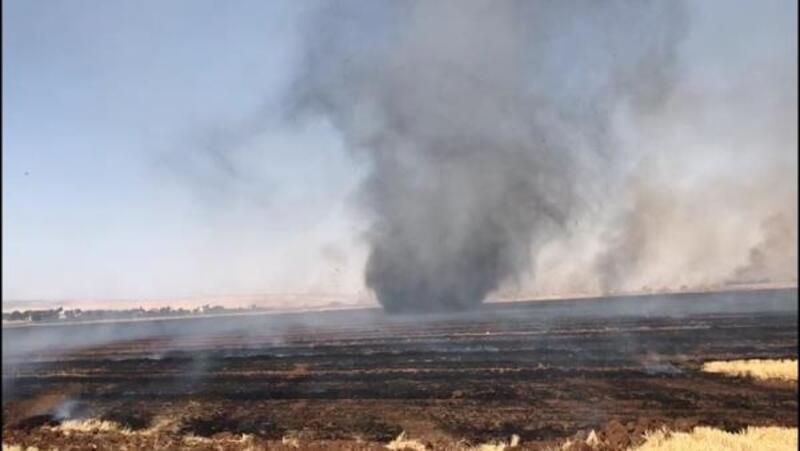Nusaybin'de anız yangını